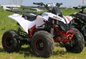 Квадроцикл MOTAX ATV Raptor-7 125